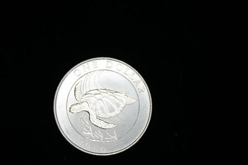 Bermuda: 1 Dollar, 1986, Suppenschildkröte, 925 Silber, in Dose ''