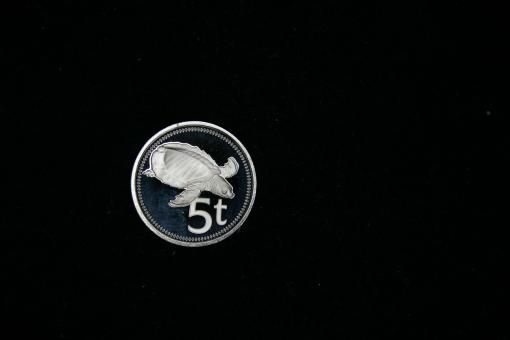 Papua-Neuguinea 5 Toea 1975 Weichschildkröte ''